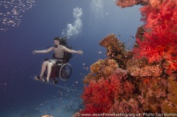 Sue is flying the underwater wheelchair in the Red Sea, her arms are outstretched and she is passing a large coral outcrop of red coral on the right There ia a shoal of glassfish to the left